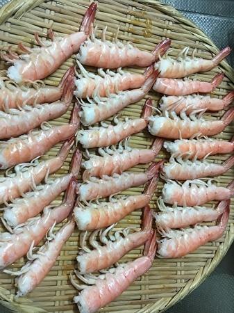 エビの寿司 エビ茹で上り.jpg