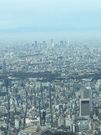 セントラルパーク 東京.jpg