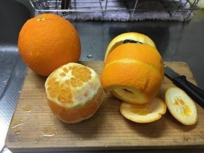 生ゴミ処理オレンジ.jpg