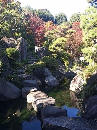 目白庭園5.jpg