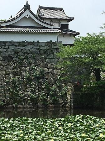 福岡城1.jpg